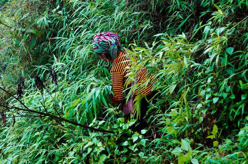 Sapa, Vietnam - The Rice Terraces of Sapa