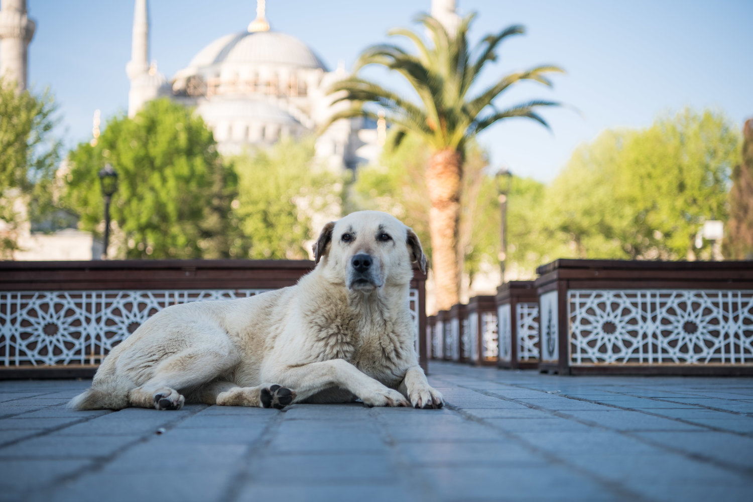 Istanbul, Turkey - One City, Two Continents, A World of Culture